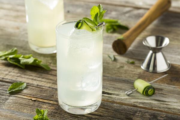 gin-fizz-cocktail-rezept