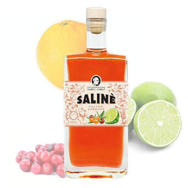 The-Seventh-Sense-Saline